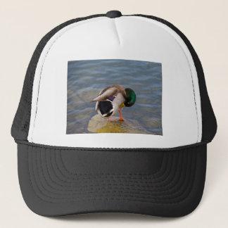 Mallard colors trucker hat