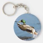 Mallard Drake Duck Basic Round Button Key Ring
