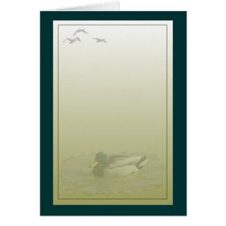 Mallard Drake Duck Greeting Card