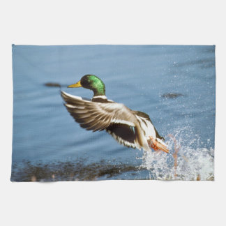 Mallard Drake Duck Tea Towel
