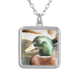 Mallard Drake Silver Plated Necklace