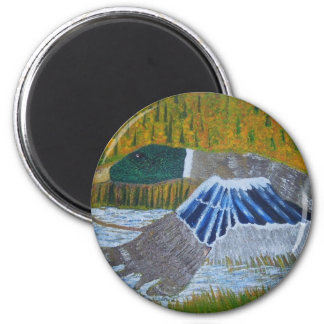 Mallard Duck 6 Cm Round Magnet