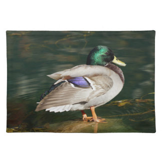 Mallard Duck Cloth Placemat