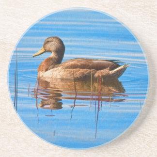 Mallard Duck Coaster Drink Coasters