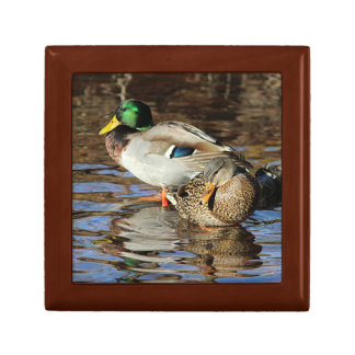 Mallard duck couple small square gift box