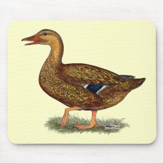 Mallard Duck Hen Mouse Pad
