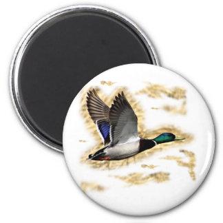 Mallard Duck Hunting 6 Cm Round Magnet