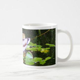 Mallard duck in a pond coffee mug