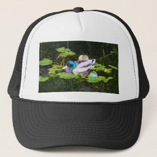 Mallard duck in a pond trucker hat