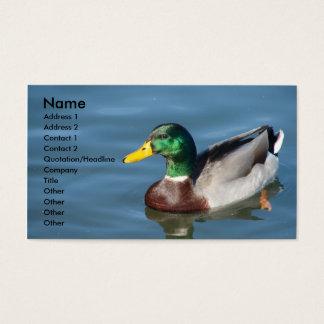 Mallard Duck In Blue Water Business Card