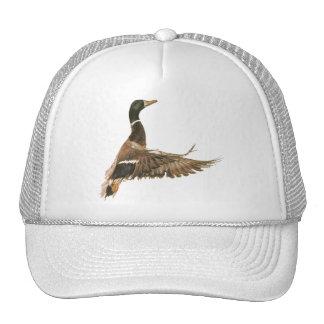 Mallard Duck in Flight Trucker Hats
