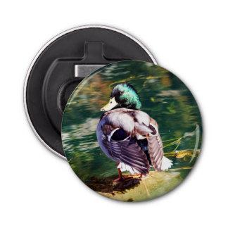 Mallard Duck Magnet Backed Bottle Opener