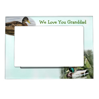 Mallard Duck Magnetic Frame2-customise Photo Frame Magnet