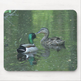 Mallard Duck Mousepad.