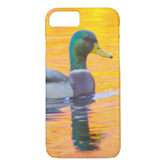 Mallard duck on orange lake, Canada iPhone 8/7 Case