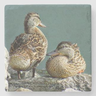 Mallard Duck Pair Stone Beverage Coaster