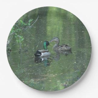 Mallard Duck, Paper Plates. Paper Plate