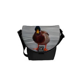 Mallard Duck Photo Courier Bag