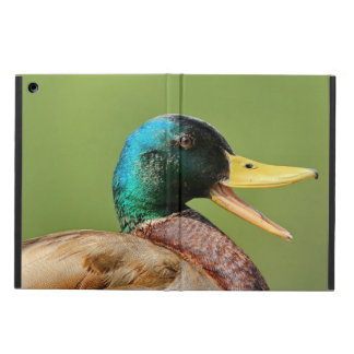 mallard duck portrait cover for iPad air