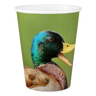 mallard duck portrait paper cup