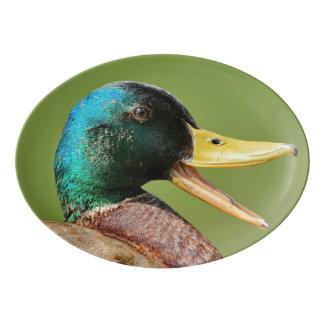 mallard duck portrait porcelain serving platter