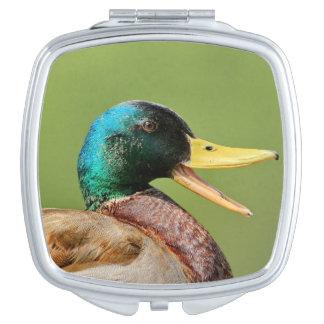 mallard duck portrait vanity mirror