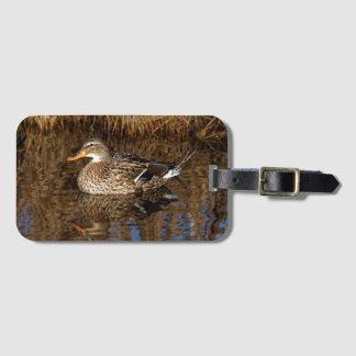 Mallard Duck Reflecting Luggage Tag