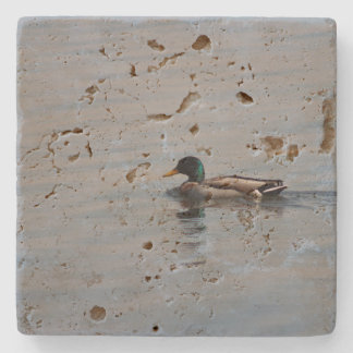 Mallard Duck Stone Beverage Coaster