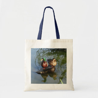 Mallard Ducks #2
