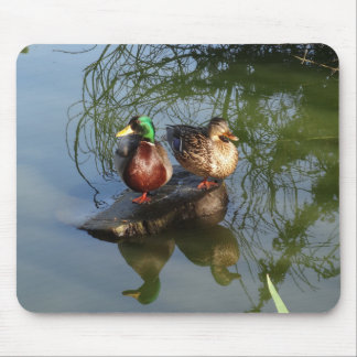 Mallard Ducks #2 Mousepad