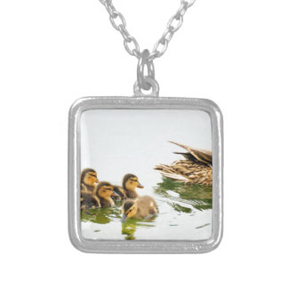 mallard-ducks-935thastuf silver plated necklace