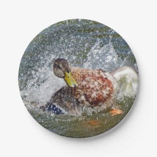 Mallard Hen Duck Splish Splash Taking A Bath Paper Plate