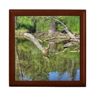 Mallard on Pond Large Square Gift Box