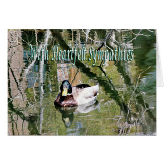 Mallard on the Pond 2- customize any occasion Card
