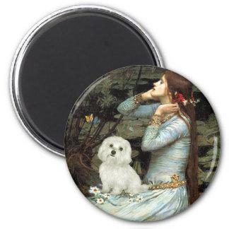 Maltese 11 - Ophelia Seated Fridge Magnet