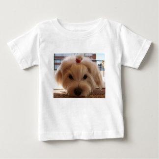 maltese 3 baby T-Shirt