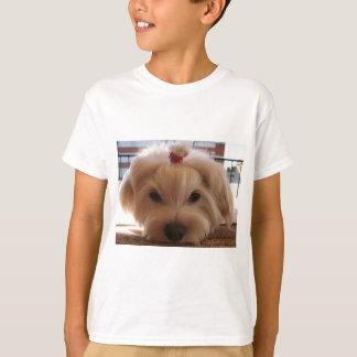 maltese 3 T-Shirt