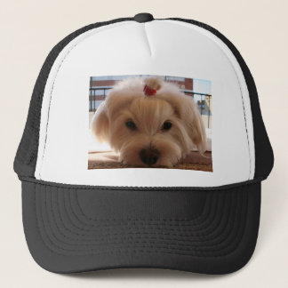 maltese 3 trucker hat