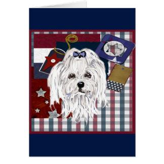 MALTESE DOG CARD