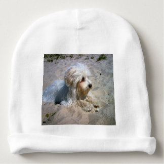 maltese on beach baby beanie