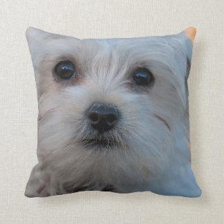 Maltese Pet Dog Throw Pillow Home Decor