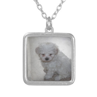 maltese pup silver plated necklace