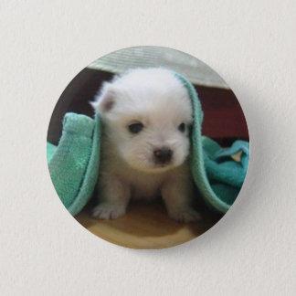 maltese puppy 6 cm round badge