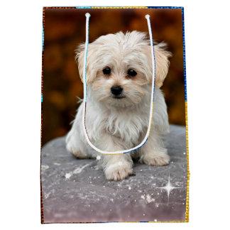 Maltese Puppy Medium Gift Bag