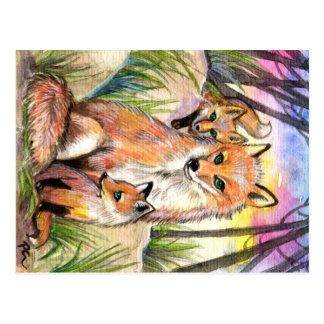 Mama And Baby Foxes Postcard