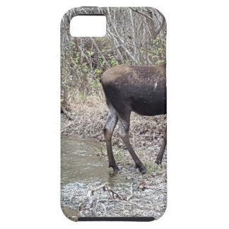 Mama and Baby Moose iPhone 5 Cases