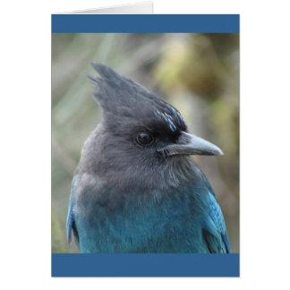 Mama Blue Card