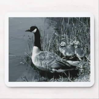 Mama Goose and Baby Geese Mouse Pad