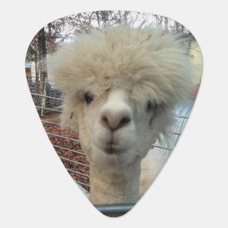 Mama Llama Guitar Pick