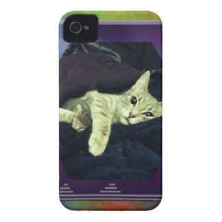 Mama Mimi & her Baby Kitties iPhone 4 Case-Mate Cases